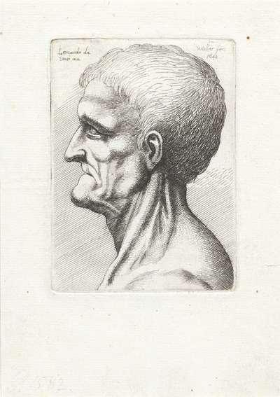 Hoofd van tandenloze oude man, en profil