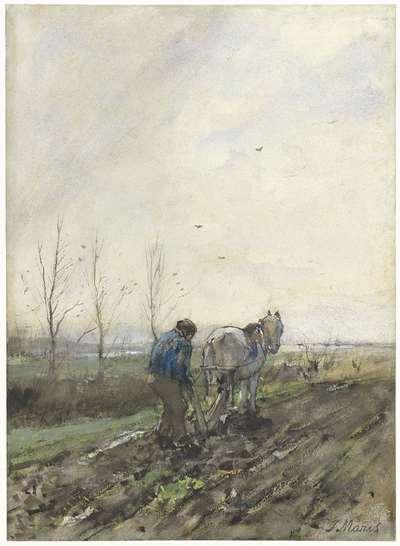 Image from object titled Ploegende boer