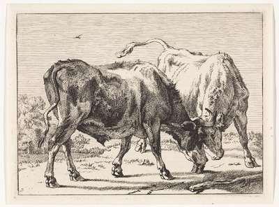 Twee vechtende ossen; Het Bullenboekje