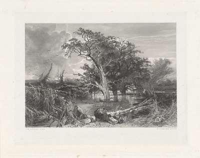 Nederlands landschap met bomen in het water