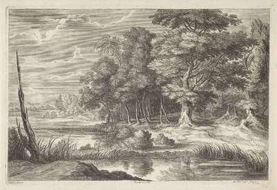 Boslandschap met vijver; Landschappen