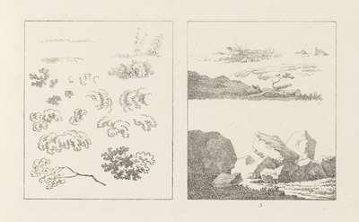 Albumblad met twee voorstellingen: links gebladerte, rechts bodembekking en een rotspartij