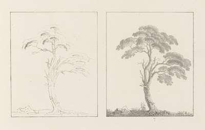 Albumblad met twee voorstellingen van twee bomen: links het ontwerp, rechts de uitvoering