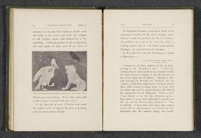 Fotoreproductie van ontwerp met een leeuw, een pelikaan en een zwarte vogel door Randolph Caldecott; Early decorative design, The property of G. Aitchison, A.R.A.
