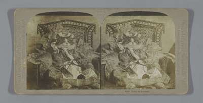 Image from object titled Poes met kleren aan en met breiwerk; Tabby as Grandma