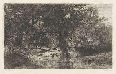 Bomen langs het water