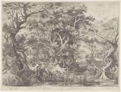Johannes de Doper in een moeraslandschap; Vox ego sum clamans pastus Baptista locustis (...); Royaalbijbel