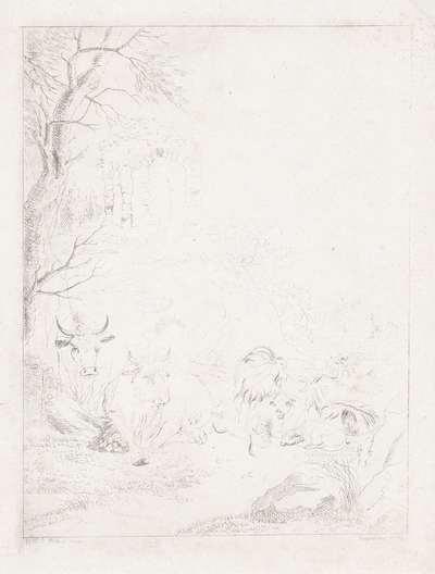 Koeien, geiten en schapen in een bergachtig landschap met ruïne
