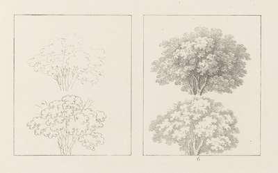 Albumblad met twee voorstellingen van bomen vol bladeren: links het ontwerp, rechts de uitvoering