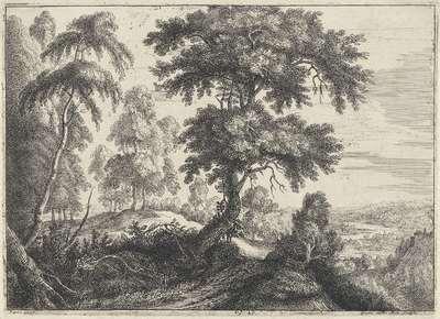 Landschap met rechts een rivier