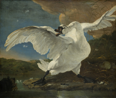 Image from object titled The Threatened Swan