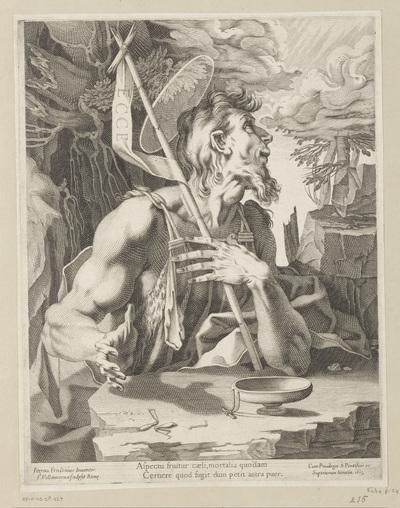 Johannes de Doper in de wildernis