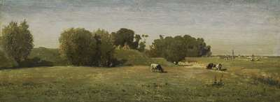 Image from object titled Landscape near Abcoude