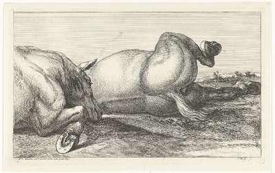 Twee achter elkaar liggende gesneuvelde paarden; Gesneuvelde paarden