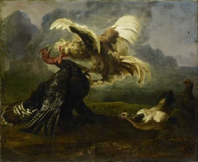 Image from object titled Fighting Birds