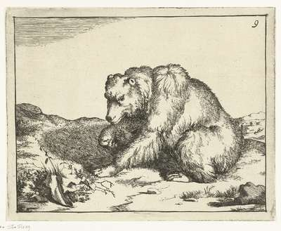 Zittende beer, en profil; Beren