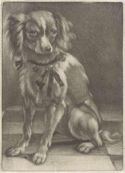 Zittende hond