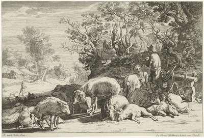 Varkenshoeder met kudde varkens