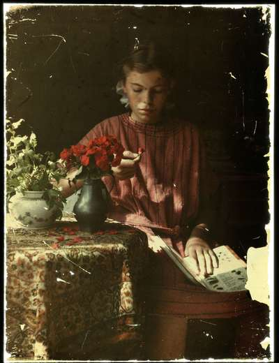 Image from object titled Meisje dat bloemblaadjes determineert