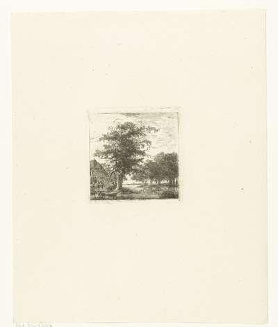 Rivier in boomrijk landschap