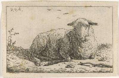 Liggend schaap