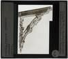 Image from object titled Pieter Coecke van Aelst de Oudere. Loggia van het huis de De Grooten Sot; Detail: Console