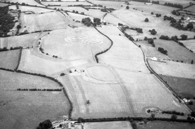 Image from object titled Oblique aerial photograph taken by Leo Swan of Castleboy, County Meath.