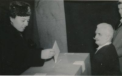 Image from object titled Szavazás