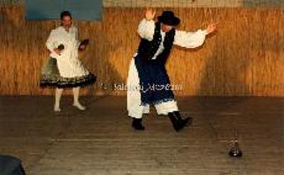 Az 1998. évi Helikoni Ünnepségek. A folklór kategória.