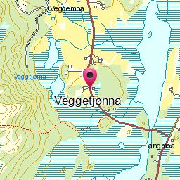 Image from object titled Veggetjønna