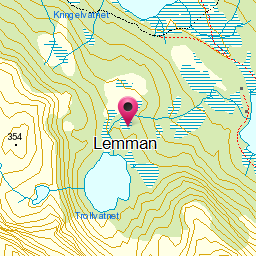 Image from object titled Lemman