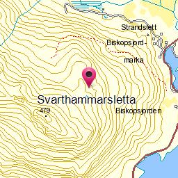 Image from object titled Svarthammarsletta