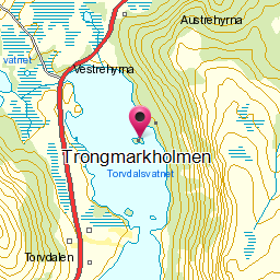 Image from object titled Trongmarkholmen