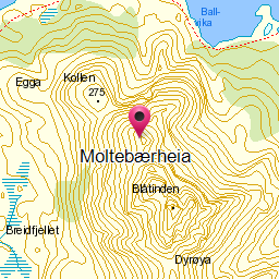 Image from object titled Moltebærheia