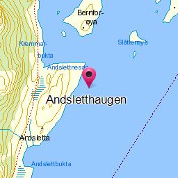 Image from object titled Andsletthaugen