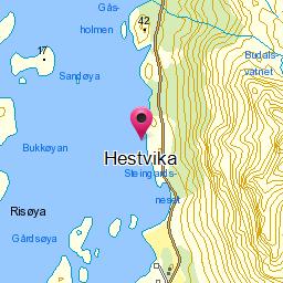 Image from object titled Hestvika