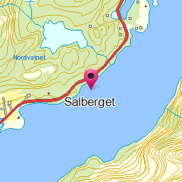 Image from object titled Salberget