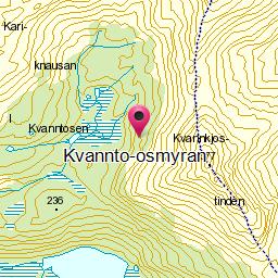 Image from object titled Kvannto-osmyran