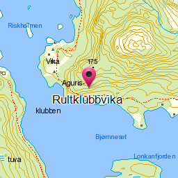 Image from object titled Rultklubbvika