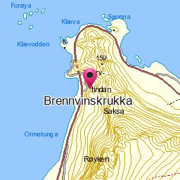 Image from object titled Brennvinskrukka