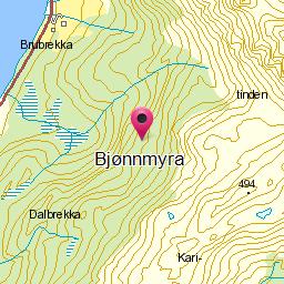 Image from object titled Bjønnmyra