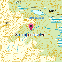 Image from object titled Strompedalselva
