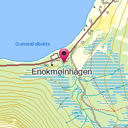 Image from object titled Enokmølnhågen