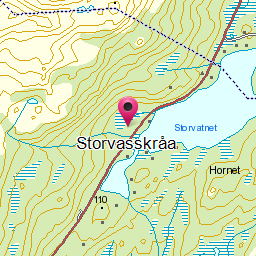 Image from object titled Storvasskråa