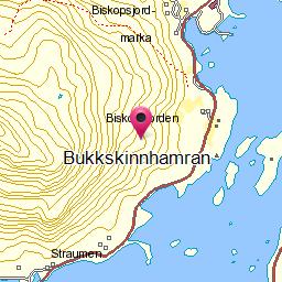 Image from object titled Bukkskinnhamran