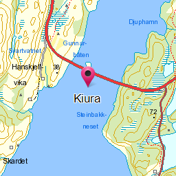 Image from object titled Kiura