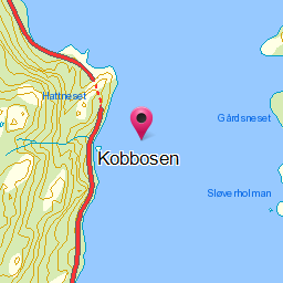 Image from object titled Kobbosen