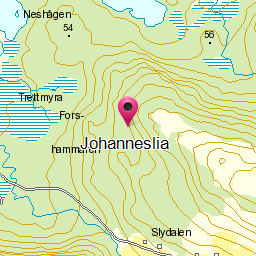 Image from object titled Johanneslia