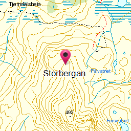 Image from object titled Storbergan