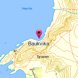 Image from object titled Baukvika